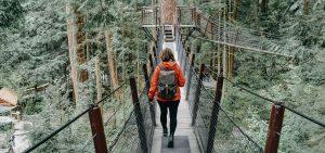 Bridge Walking